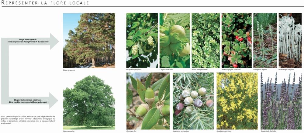 3 Jardin Privé Roussillon_1280 x 1280_Marrot
